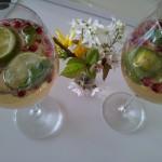 Holunder trifft Granatapfel - DAS Frühlingsgetränk